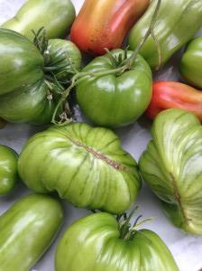 Ät mer grönt och välj en vegetarisk matkasse. (Bild: hittamatkassen.se)